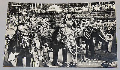 Vintage B/W Real Photo Postcard Temple Elephants Perahera Procession Kandy