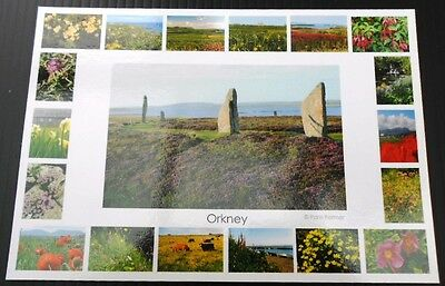 Orkney postcard - Ring of Brodgar & flowers multi view, immaculate