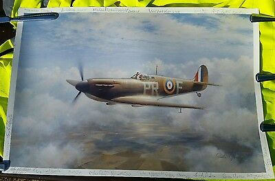 John Young Print Signed By 18+ Battle Of Britain Pilots