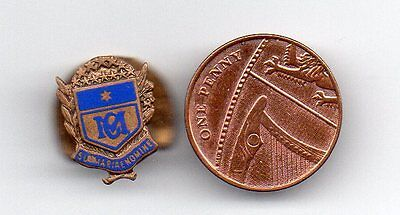 A Old Marist Lapel  Badge Age Unknown