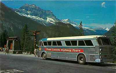 Postcard Trans-Canada Highway Coach Bus on Royal Glacier Tours