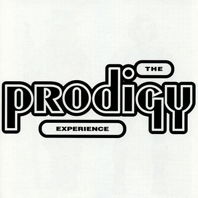 The Prodigy Experience New Sealed Double Vinyl Lp In Stock