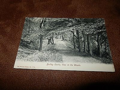 Early Wrench Postcard - View in Woods Dudley Castle - Staffordshire