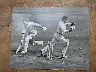 MIDDX v LEICESTER  - LORDS 1959  Run Out   Original PRESS PHOTOGRAPH Cricket