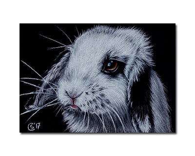 BUNNY 141 dutch rabbit Easter hare painting Sandrine Curtiss ORIGINAL Art ACEO