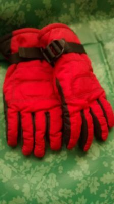 Gloves Thinsulate Insulation 40 Gram Age 3-6Yrs From Next Red