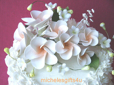 Gum Paste White & Peach Frangipani Hawaiian Sugar Cake Flowers