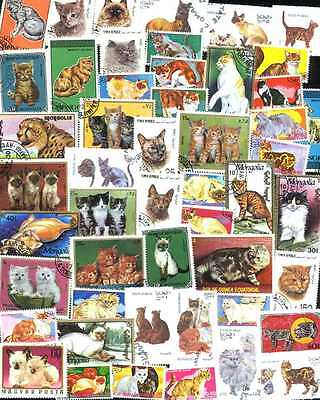 Collection of 50 Different CAT (CATS) Stamps