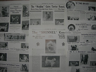 Vintage Cairn Terrier clippings
