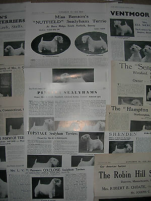 Sealyham Terrier kennel breed clippings