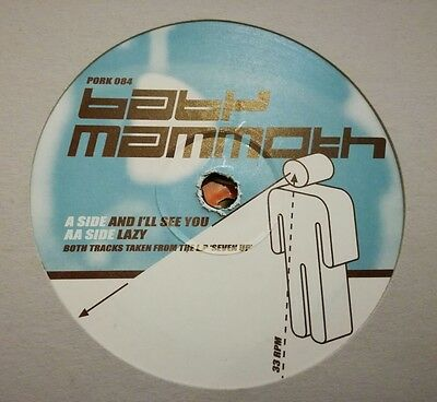 """Baby Mammoth - And I'll See You 12"""" Pork 084 Pork Recordings 2001 Vg+!"""
