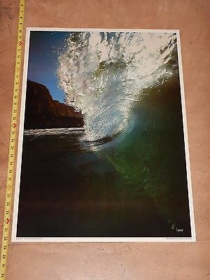"""VINTAGE ORIGINAL 1970s  SILVER CURL SURFING PHOTO POSTER DAVID """"WOODY"""" WOODWORTH"""