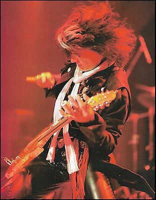 Aerosmith Joe Perry live onstage 8 x 11 pinup photo trimmed and ready to frame