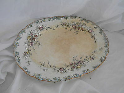 VINTAGE ANTIQUE Traditional 19th Century Large SERVING PLATTER Stoke 41cms