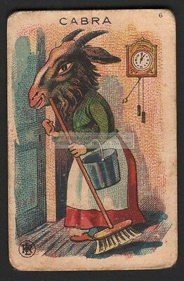 A Goat Housekeeper With A Broom c1910 Trade Advertising Card