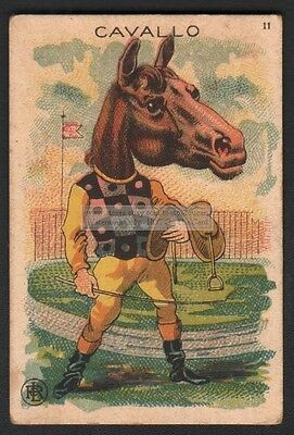 A Horse Cavallo Dressed as A Jocky c1910 Trade Advertising Card