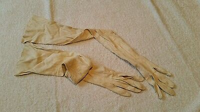 Long Cream Evening/Opera Gloves
