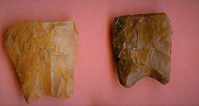 GEM QUALITY COLORADO BASES ARROWHEADS Indian artifacts AACA