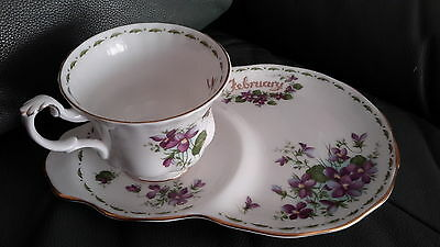 Royal Albert Flower of the Month cup/saucer - February