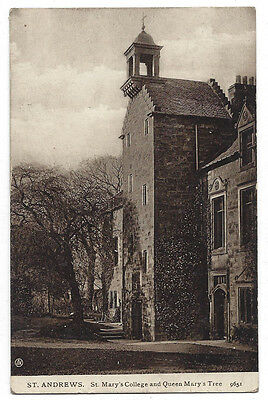 ST ANDREWS St Marys College & Queen Mary's Tree, Postcard by Valentine Sent 1908