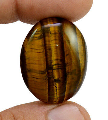 40.7ct Rare Natural Yellow Tiger Eye Oval Cabochon Loose Gemstone For Pendant