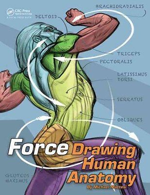 Force: Drawing Human Anatomy by Mike Mattesi 9780415733977 (Paperback, 2017)