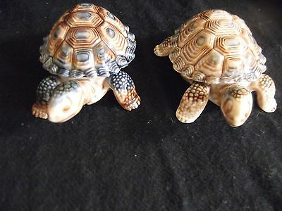 Wade Two Tortoise lidded shell trinket dishes