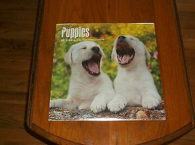 Nip I Love Puppies 2015-2016 12 Month Calendar Great Pictures