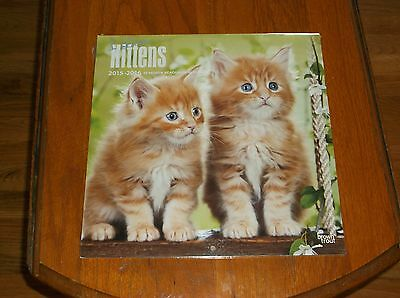 Nip I Love Kittens 2015-2016 12 Month Calendar Great Pictures