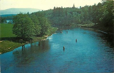 p1067 Salmon fishing on the River Spey, Scotland postcard