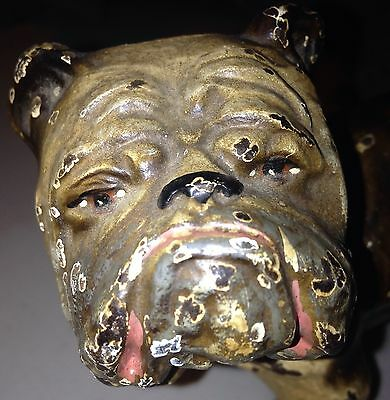 Estate Fresh 1 of 2 Antique Hubley Cast Iron Figural English Bull Dog Door Stop