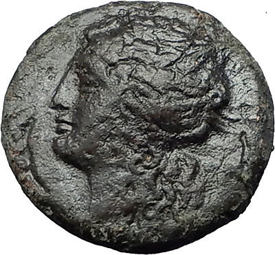 SYRACUSE SICILY 269BC Hieron II Apollo Horse RARE R1 Ancient Greek Coin i58745