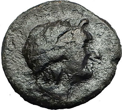 KATANE in SICILY 339BC Apollo Aphrodite Dove RARE R1 Ancient Greek Coin i58446