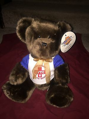 *NSYNC 2003 Challenge For The Children Collectible Teddy Bear