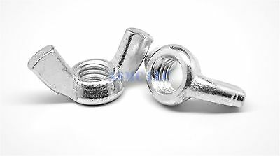 "1/4""-20 Coarse Thread Forged Wing Nut Type A Stainless Steel 18-8 Pk 100"