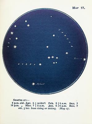 Antique Print Star Chart - Constellations - Celestial - Astrology - Astronomy 17