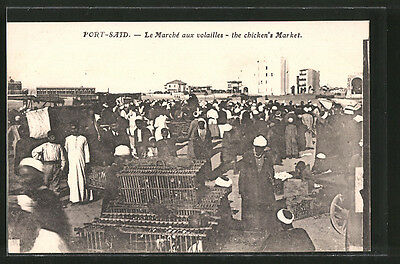 CPA Port-Said, Le marché aux volailles, the chicken´s market, arabische Händler