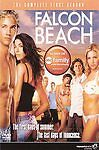 Falcon Beach - The Complete First Season DVD, 2007, 4-Disc Set, Sealed