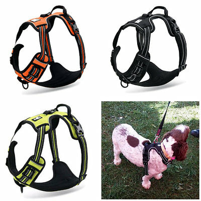 Truelove No Pull Anti Pull Reflective Dog Walking Harness With Handle 5 Colours