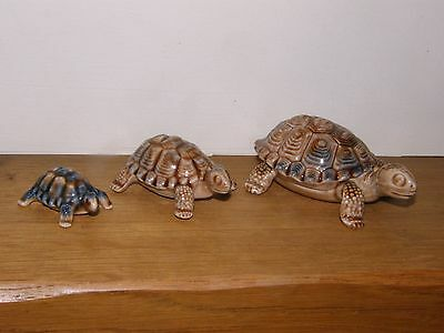 Set of Three Porcelain Wade Tortoises: Father (Lift off Lid), Mother, Baby