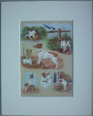 """Reduced Jack Russel Terrier Brian Tovey Dog Art Card Print Mounted 10 X 8"""" Sale"""