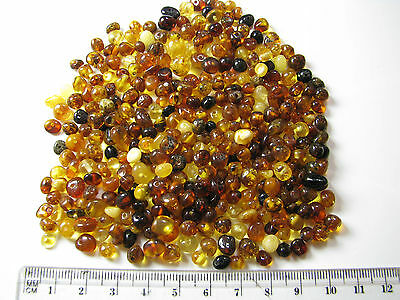 Genuine BALTIC amber loose beads holed, Multi color, Rounded 10 grams ~100pcs