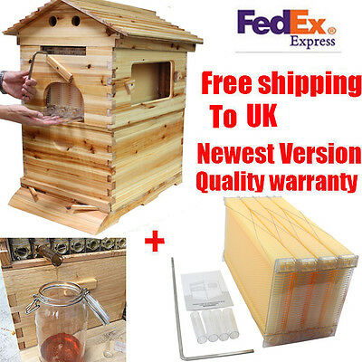 Mini Family Beekeeping Wooden House + 4 PCS  Auto Flow Honey Beehive Frames