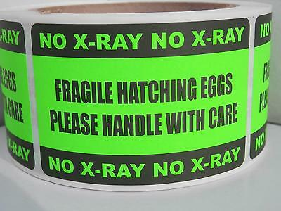 250 FRAGILE HATCHING EGGS HANDLE/CARE NO X-RAY 2x3 sticker label fluor green
