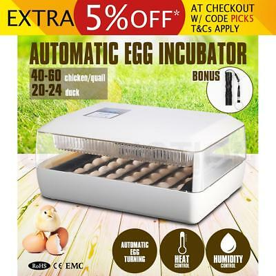 High Accuracy Automatic Egg Incubator Chicken Duck Poultry Hatcher