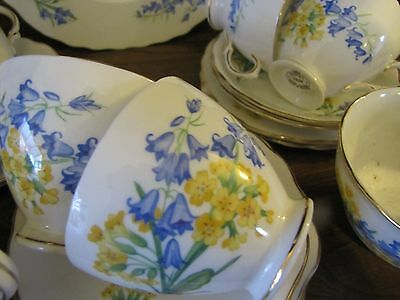 Vintage Royal Vale~Spring Flowers~Cowslip and Bluebell. 21piece part Tea Set