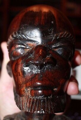 Large African Bust Wood carving bearded man Mid-Century 1900's Fantastic art