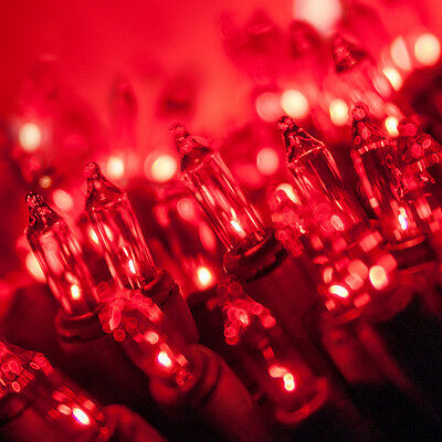 Red - Green Wire Steady Christmas Holiday Lights - 50 Bulbs, 23' total