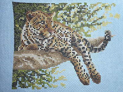 Leopard - Completed Cross Stitch