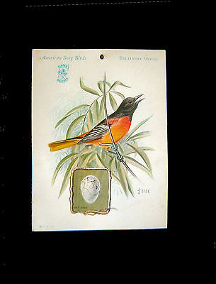 Victorian Card=Singer Sewing Machine=BALTIMORE ORIOLE=American Song Bird